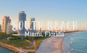 4 Reasons to Visit Miami Beach in your next Trip