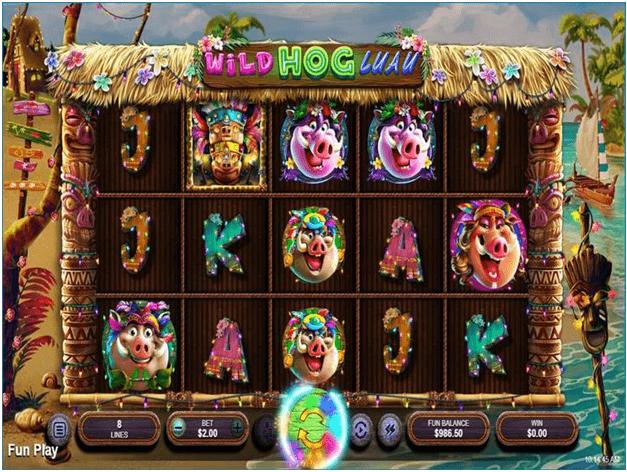 About Wild Hog Luau slot