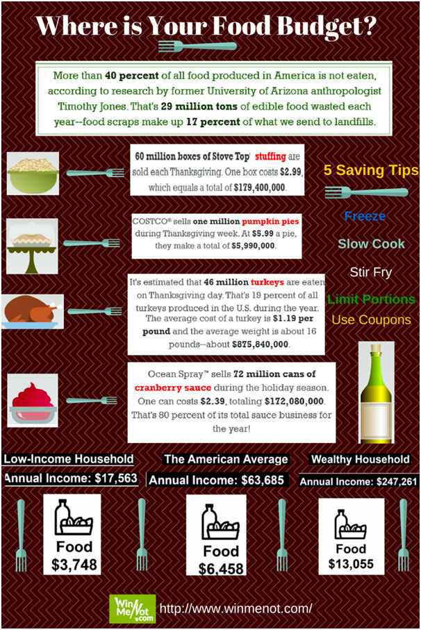 Food Budget Infographic