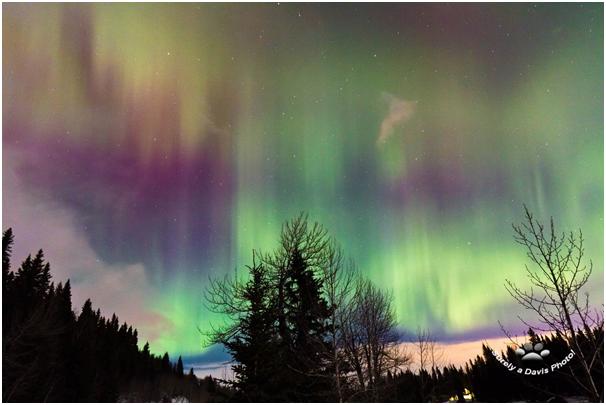 Watch Northern Lights on Valentine Day