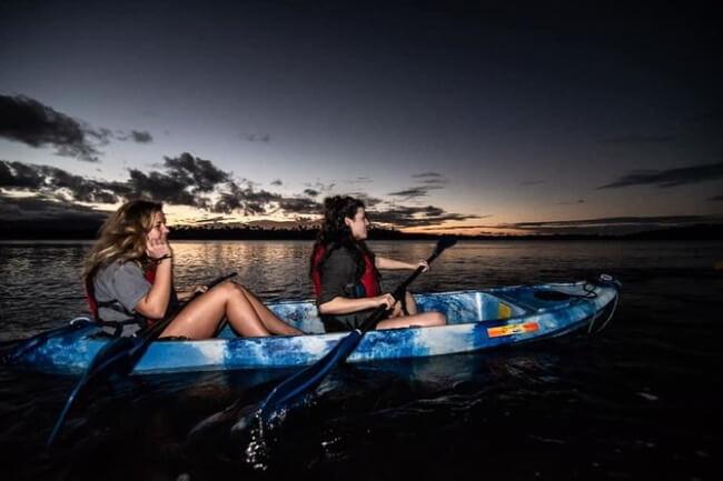 Kayak in a Bioluminescent Bay