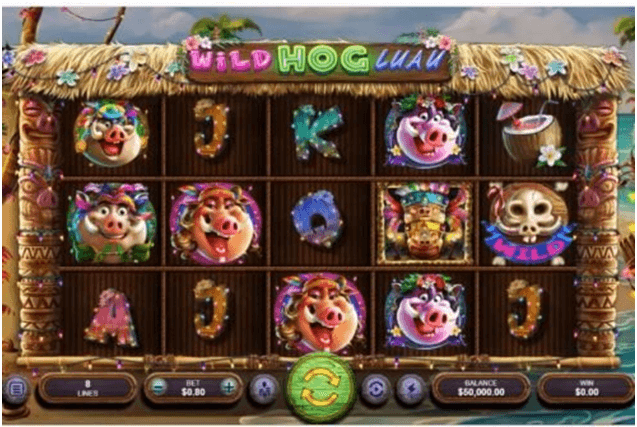 Wild Hog Luau slot features