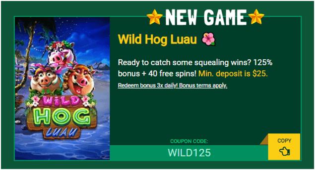 Wild hog slot -Fair Go Casino