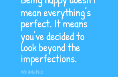 Being happy doesn't mean everything's perfect. It means you've decided to look beyond the imperfections.
